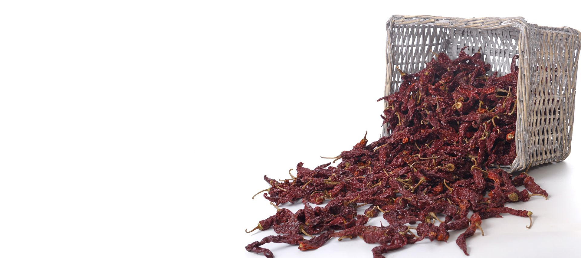 Byadgi Chilli, Kashmiri Chilli, Dry Red Chilli, B D Patil, B D Patil & Company, Chilli Merchants, Byadgi, Karnataka, India, Chilli, Chillies, Cilli powder, Red Chilli, Red Chilli Powder, Dry chilli, Chilli flakes, Chilli Seeds, Chilli Seed Oil, Paprika Oleoresin
